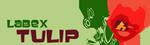 Labex_Tulip